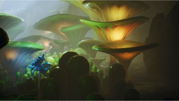 Plante fluorescente