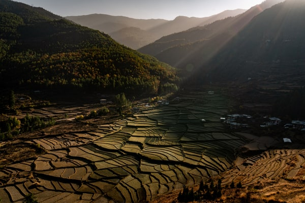 Bhoutan pays 100% bio