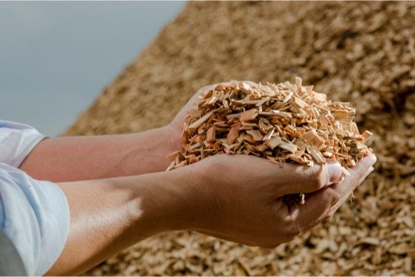 Définir l'énergie biomasse