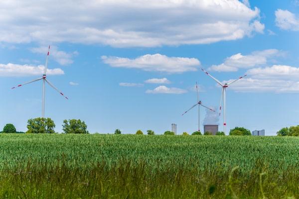 Les énergies renouvelables sont nuisibles pour l'environnement