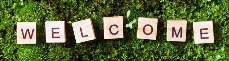 Blog écologie